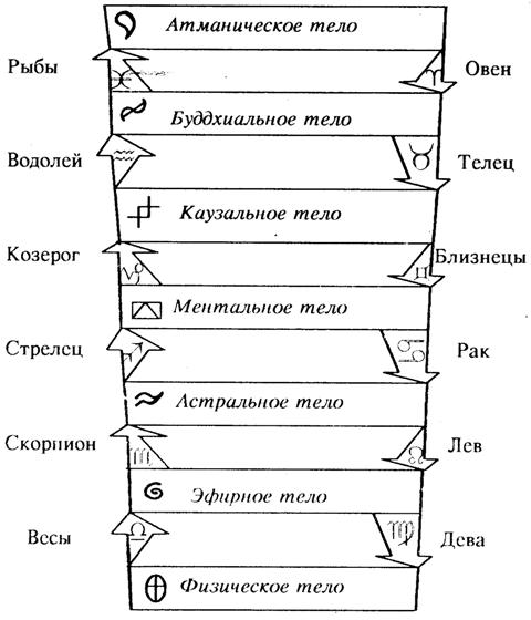 Алхимическая схема (тонкие